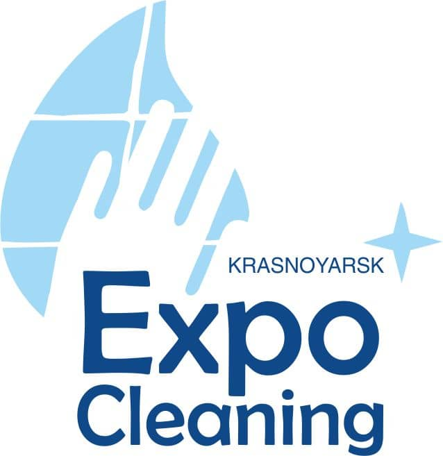 logo_cleaning